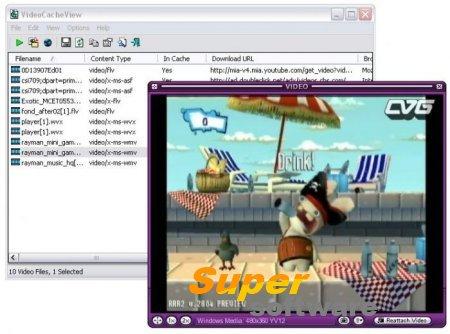 Скриншот VideoCacheView 2.96