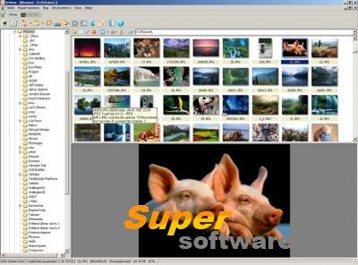 Скриншот XnView 2.39