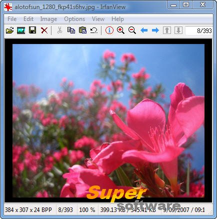 Скриншот IrfanView 4.42