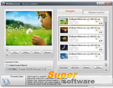 Скриншот WinWatermark Standard Edition 2.9.3